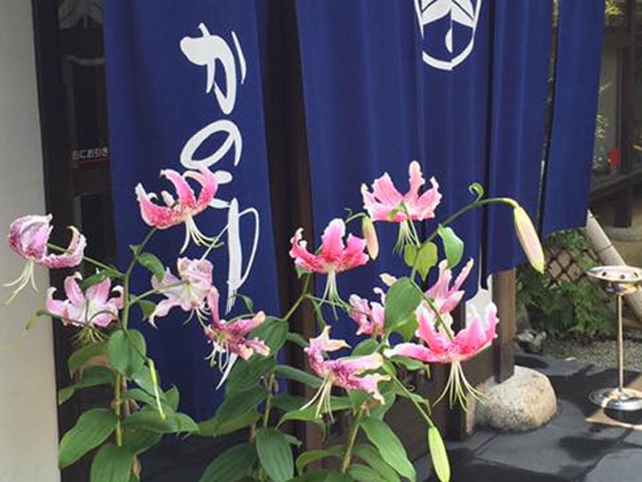 宗像市の花