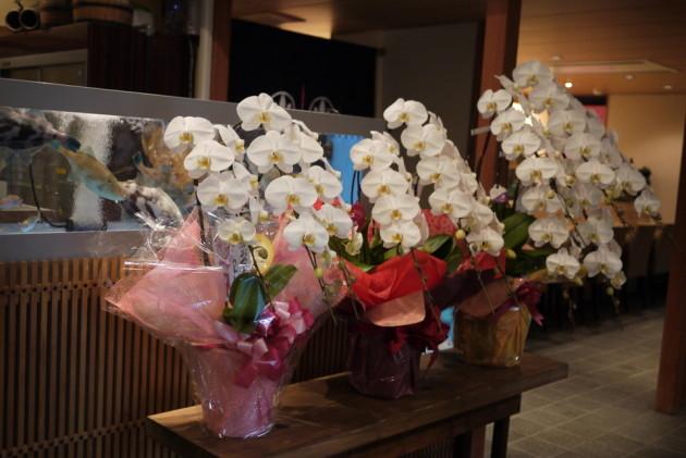 多くのお花ありがとうございます